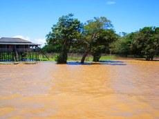 Moradia dos ribeirinhos próxima ao município de Santarém/PA, no período de cheia na floresta de várzea, banhada pelo rio Amazonas. Foto: Cecília Carvalho – Julho 2014.