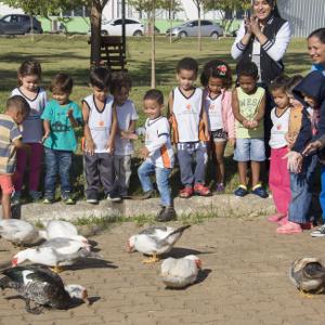 Visita alunos educação infantil na horta do Campus