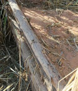 Paliçada - retenção de enxurrada e sedimento