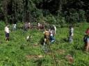 Plantio de mudas no campus