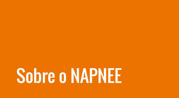 Sobre o Napnee